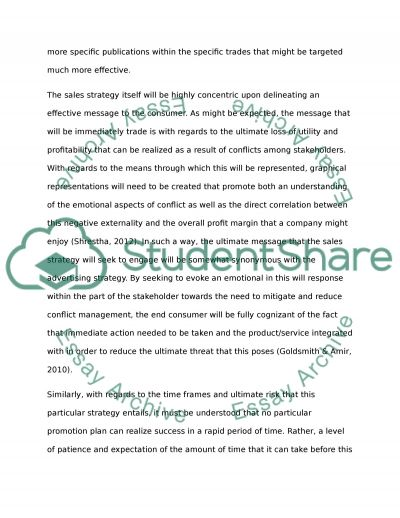 Organisation Promotion Plan Essay example