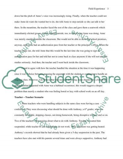 Field Experience essay example