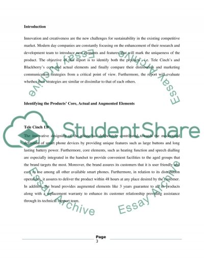Marketing Presentation Report essay example