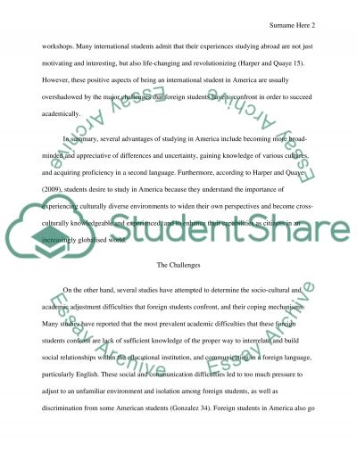 International Students in America: The Challenges and Opportunities essay example