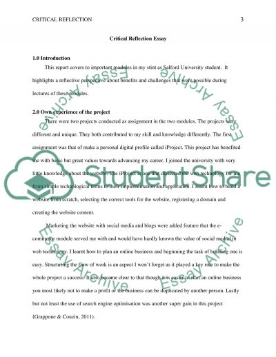 reflection of the module assignments  ahmed Essay example