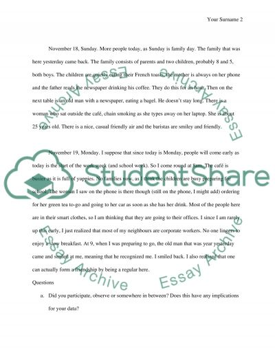 Participant Observation essay example