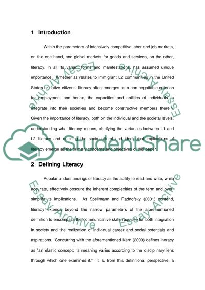 What is literacy essay example