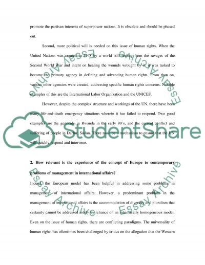 International Organizations Essay example