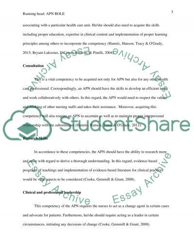 APN Role essay example