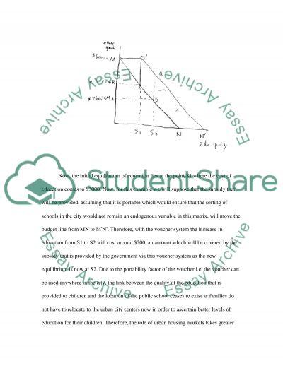 School Voucher System essay example
