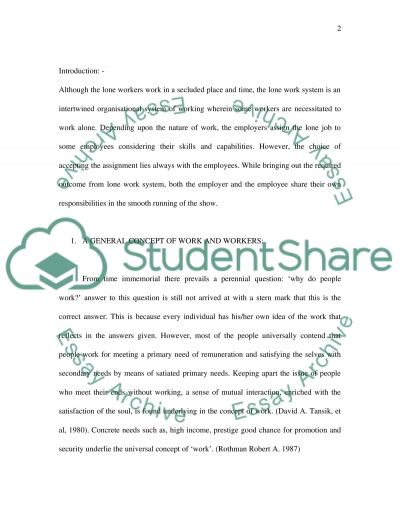 Lone Worker essay example