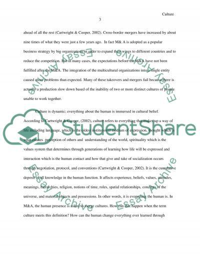 Cultural diversity essay example