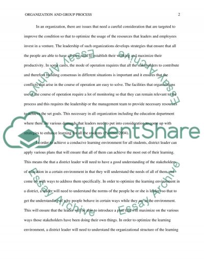 Organization and Group Process essay example