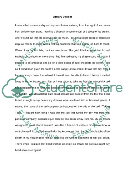 Short Story Using Literary Devices Essay Example Topics And Well