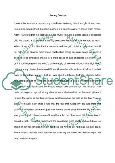 Literature essay sample