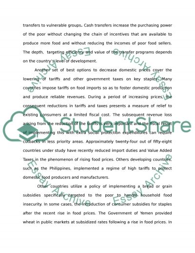The Impact of Rising Food and Fuel Prices essay example