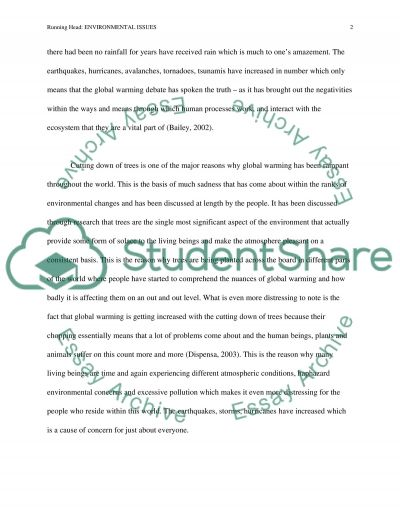 Environmental Issues: Global Warming essay example