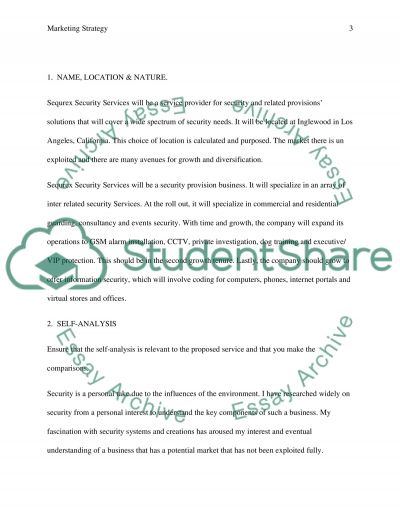 Marketing and Marketing Strategy Coursework example
