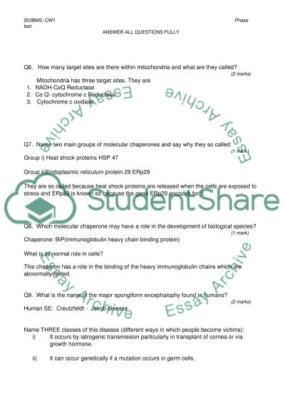 Q and answers essay example