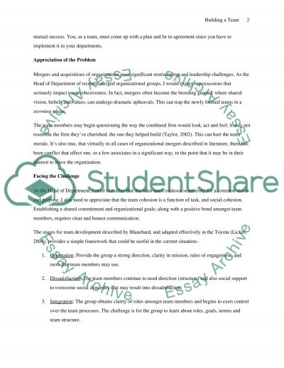 What Makes a Good Team essay example