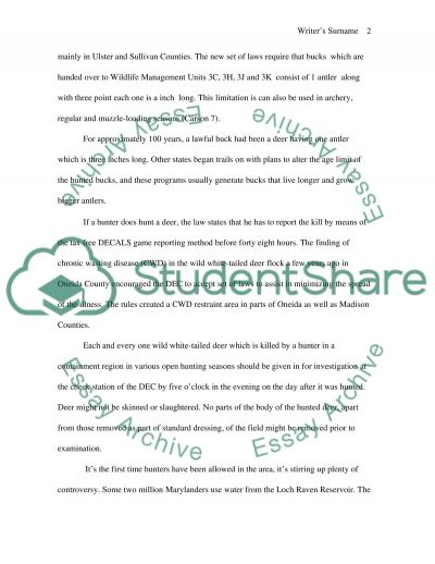 Deer Hunting Protest essay example