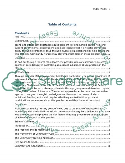 Community development nursing Written assignment essay example