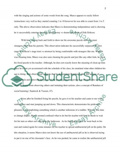 Toddler Observation Essay essay example