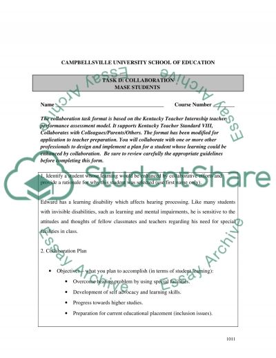 Collaborative project essay example