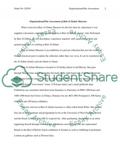 Organisational Site Assessment essay example