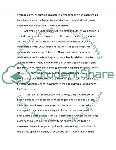 Nvestment Strategy Report For Investment Analysis Class essay example