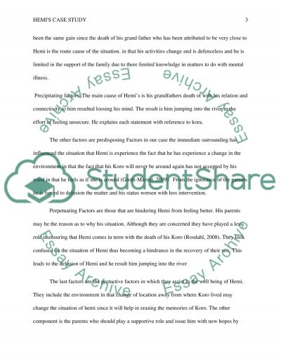 Hemis case study essay example