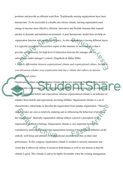 Nursing Leadership Master Essay essay example