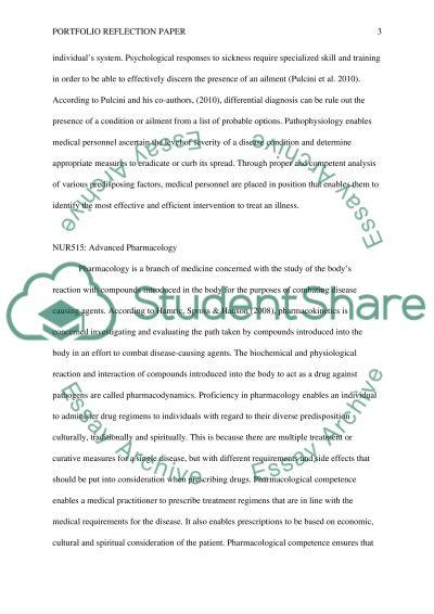 Portfolio Reflection Paper essay example