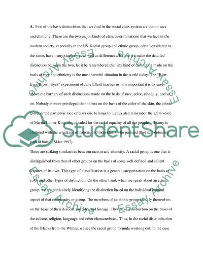 Cultural Diversity Essay essay example