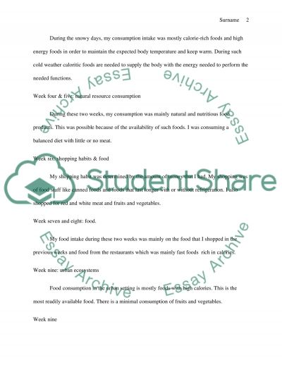 Consumption Journal essay example