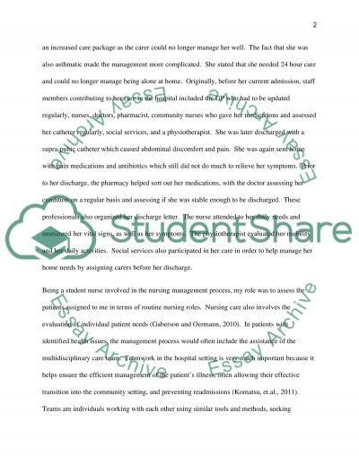 Nursing Care Management essay example