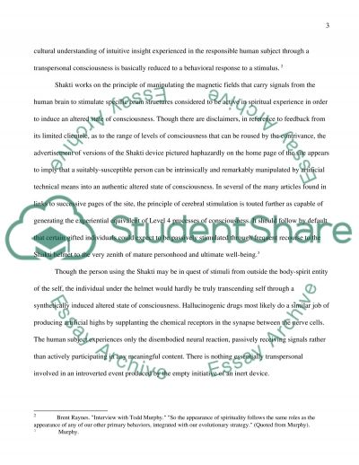 Innerworlds and Integral Websites essay example