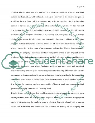 Audit and Internal Control Issues essay example
