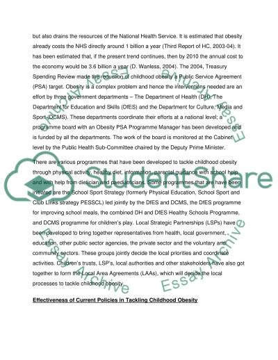 Promoting PuplicHealth essay example