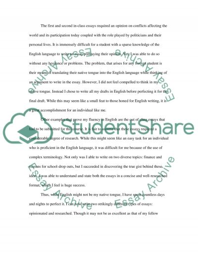Reflective introduction essay essay example