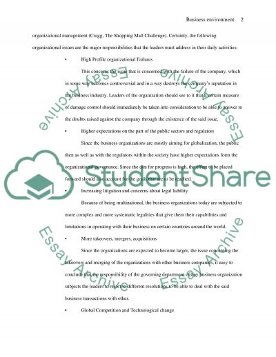 Developing an Ethical Business Environment essay example