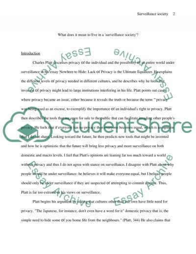 Surveillance Society Book Report/Review essay example