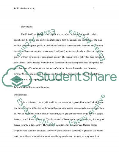 Policy Briefing essay example