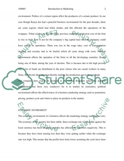 Introduction to Marketing Assignment essay example