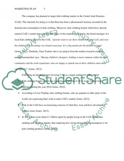 Company Introduction, Market Segmentation, and Product Positioning essay example