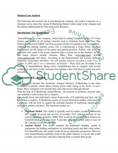 E-Business report essay example