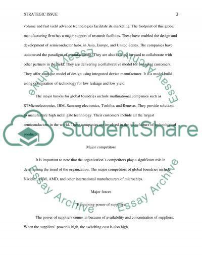 Strategic Issue Marketing Paper essay example