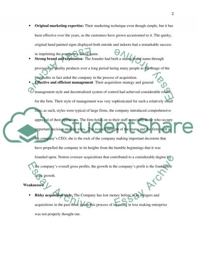 SWOT essay example