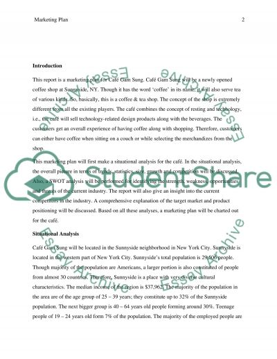 Summary Marketing Plan essay example