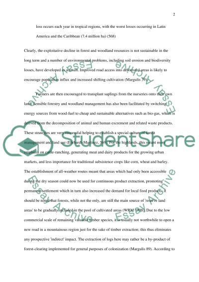 Deforestation essay example