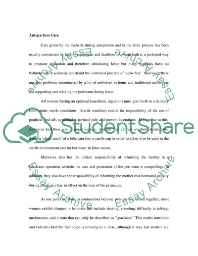 How To Write A Research Essay Thesis Midwifery Essay Thesis Statement Essays also Modest Proposal Essay Ideas Midwifery Essay Example  Topics And Well Written Essays   Words Personal Essay Thesis Statement