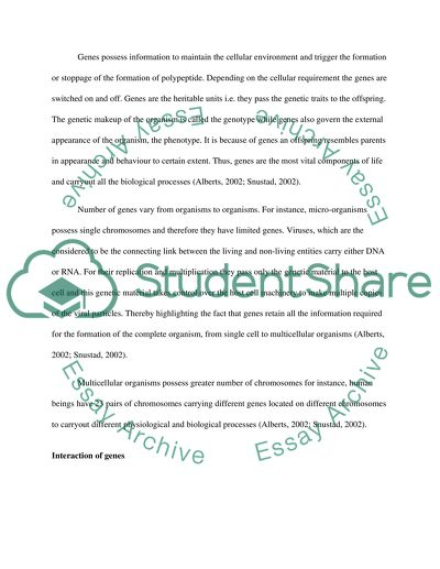 Genes and Environment Essay