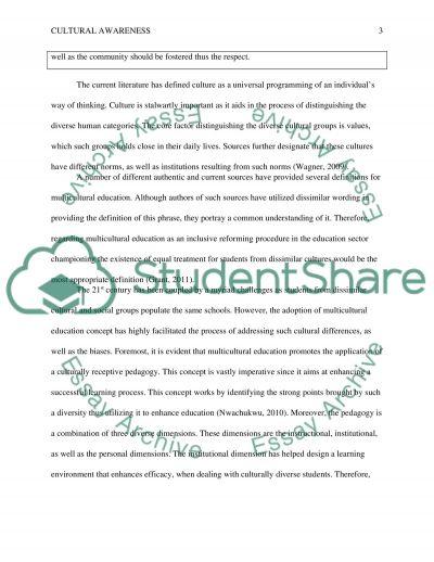 Education - Cultural Awareness essay example