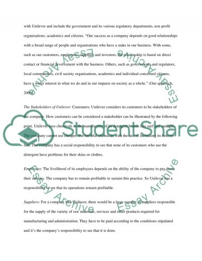 Organisations essay example